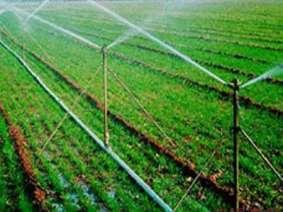 小麦玉米喷灌